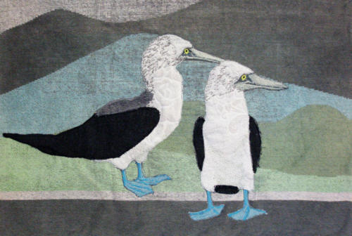 Galapagos Jan van Genten
